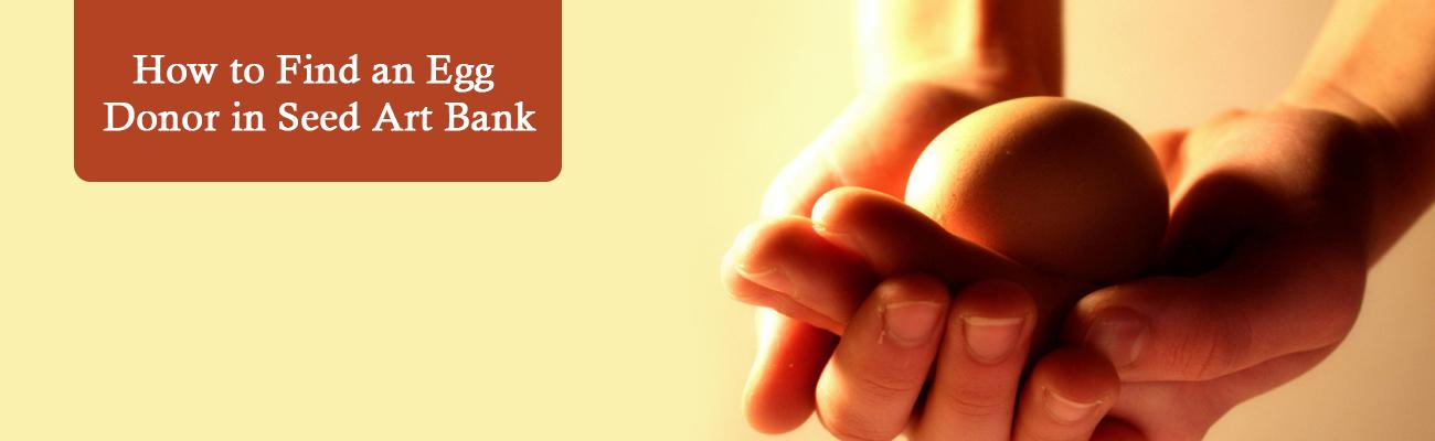 Article : Seed ART Bank